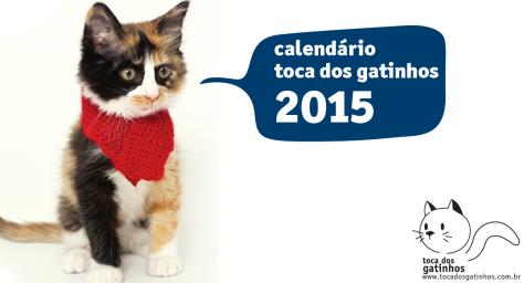capa do calendario 2015