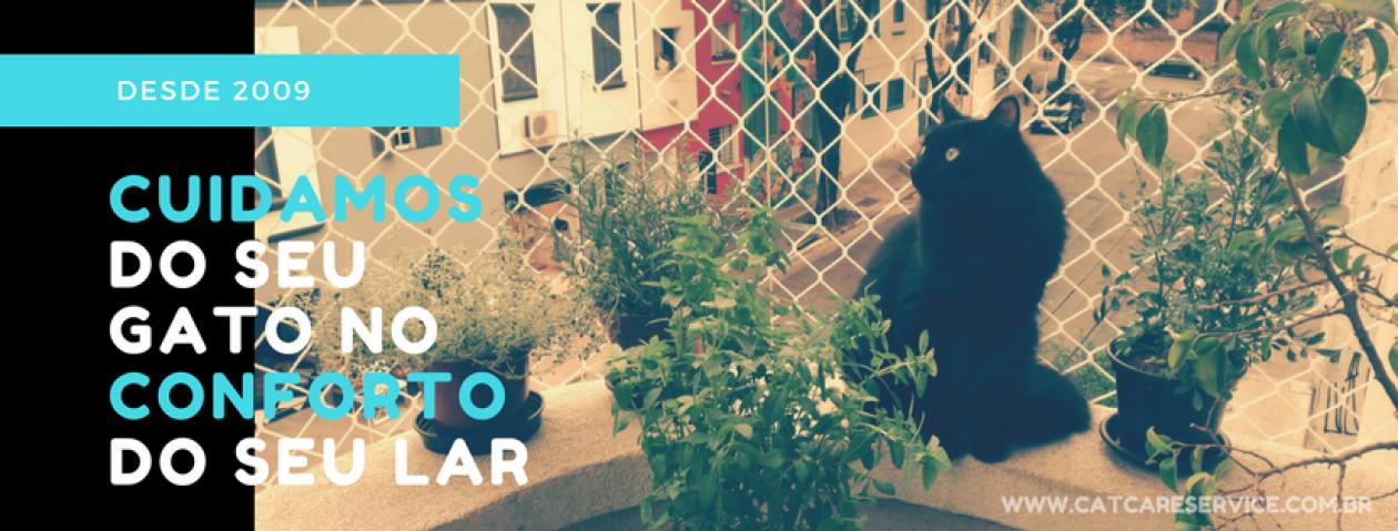 Cat Care – Cuidamos do seu gatinho no conforto do seu lar
